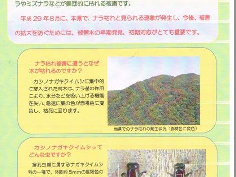 ナラ枯れ被害対策について【環境農政委員会における質疑】
